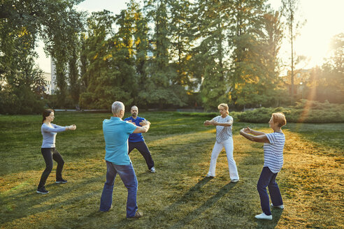 Group of people doing Tai chi in a park - ZEDF00893