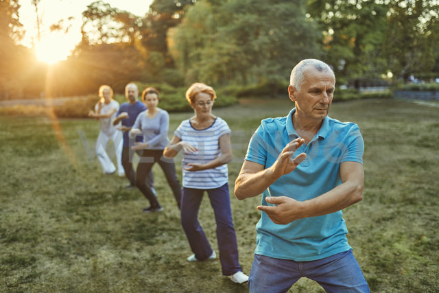 Group of people doing Tai chi in a park - ZEDF00896
