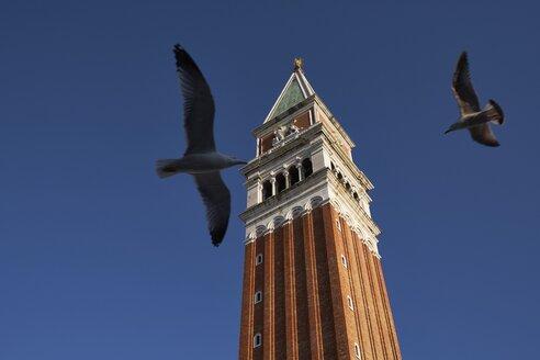 Italy, Venice, Campanile di San Marco - MRF01729