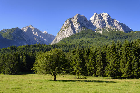 Germany, Upper Bavaria, Wetterstein mountains with Waxenstein and Alpspitz - SIEF07540