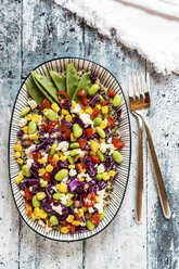 Quinoa salad with Edamame, feta, pomegranate seeds, tomatoes, red cabbage and snow peas on plate - SARF03373