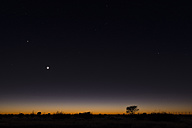 Namibia, Region Khomas, near Uhlenhorst, Astrophoto, RIsing moon and Planet Venus above a glowing savannah horizon - THGF00003