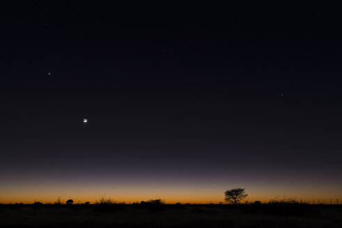 Namibia, Region Khomas, near Uhlenhorst, Astrophoto, RIsing moon and Planet Venus above a glowing savannah horizon - THGF00003