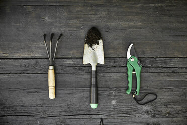 Three gardening tools on dark wood - PDF01400