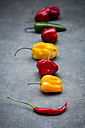 Row of various chili pods on grey ground - LVF06319