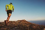 Italy, man running on mountain trail - SIPF01789