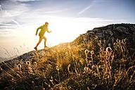Italy, man running on mountain trail - SIPF01798