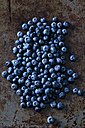 Blueberries - CSF28327