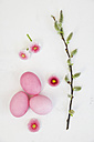 Hand dyed pink Easter eggs with daisy and catkin decoration on wooden background - GWF05261