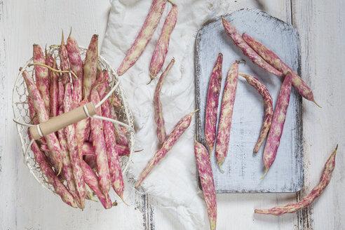 Borlotti beans - SBDF03307