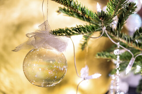 Fir branch with transparent Christmas bauble, close-up - PUF00774