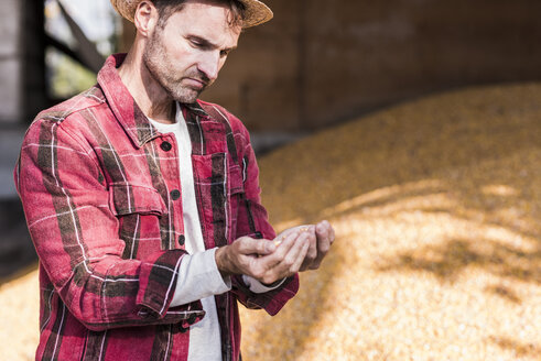 Farmer examining grain of maize - UUF11931