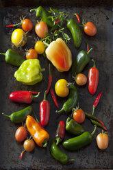 Various organic vegetables on dark ground - CSF28345