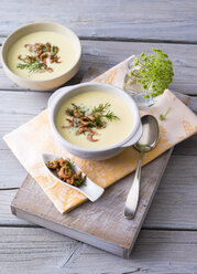 Cream of potato soup with North sea shrimps and dill - PPXF00091