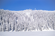 Germany, Baden-Wuerttemberg, winter landscape at Black forest near Mummelsee - PUF00794