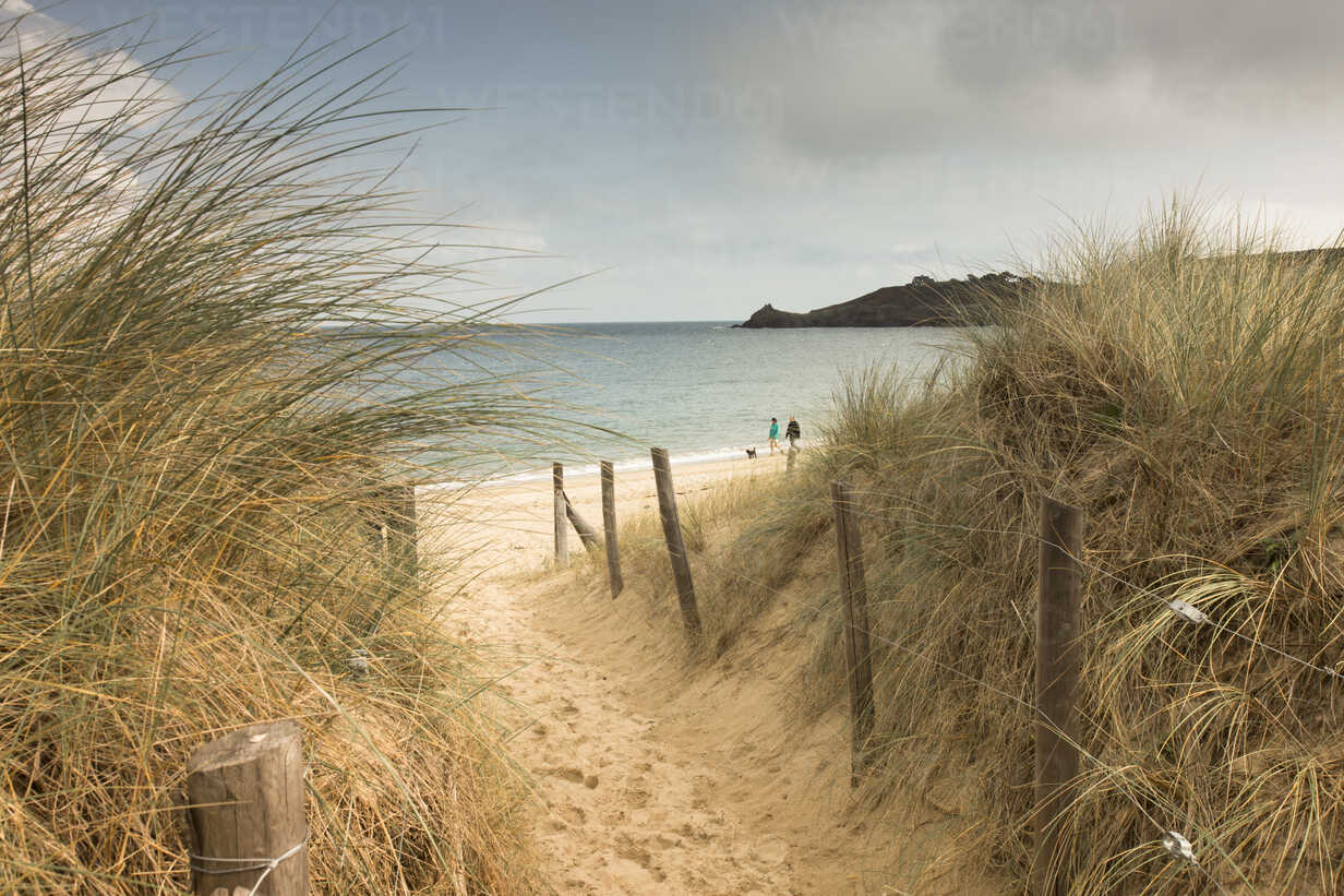 France, Bretagne, view to the sea with walkers on the beach and beach dunes in the foreground - FCF01285 - Christina Falkenberg/Westend61
