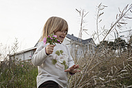 Carefree little girl picking flowers - KMKF00031