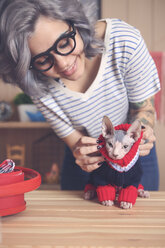 Woman putting pullover on her Sphynx cat at home - RTBF01059