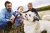Cute little boy with parents and dog in dandelion field - HAPF02321