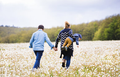 Mother with husband carrying little boy in dandelion field - HAPF02324