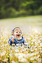 Happy little boy in meadow full of dandelions - HAPF02327