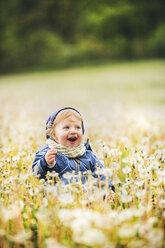 Happy little boy in meadow full of dandelions - HAPF02327