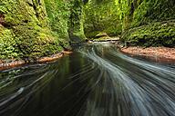 Great Britain, Scotland, Trossachs National Park, Finnich Glen canyon - STSF01322
