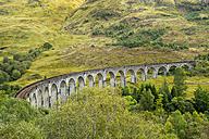 Great Britain, Scotland, Scottish Highlands, Glenfinnan Viaduct - STSF01325