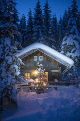 Austria, Altenmarkt-Zauchensee, Christmas tree at illuminated wooden house in snow at night - HHF05515