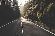 Spain, Tenerife, Corona Forestal Nature Park, empty road - SIPF01818