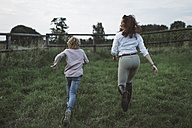 Back view of boy and young woman running side by side on a paddock - KMKF00041