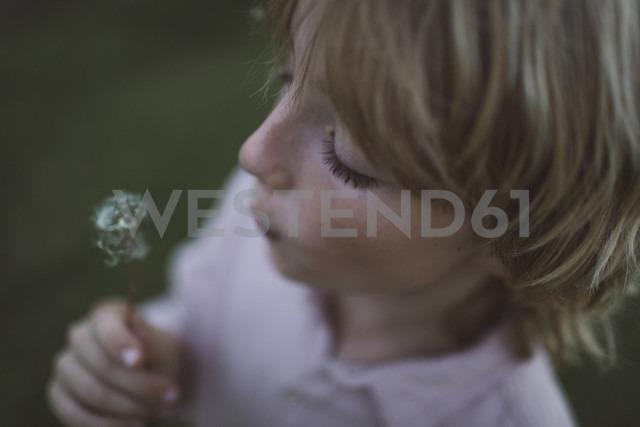 Boy blowing blowball - KMKF00044