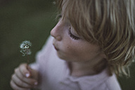 Boy blowing blowball - KMKF00044