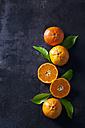Sliced tangerines on dark backround - CSF28470