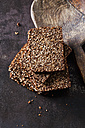 Coarse rye whole meal bread - CSF28488