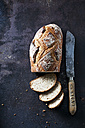 Fresh sourdough brown bread - CSF28491