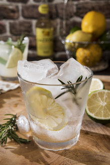 Glass of Gin Tonic with lemon, rosmary and ice - CSTF01425