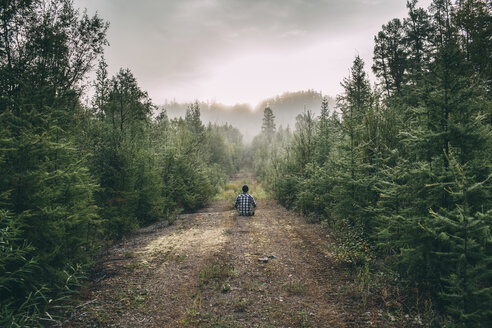 Man sitting on path in forest - VPIF00246