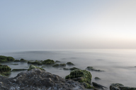 Italy, Calabria, Tropea, Tyrrhenian Sea, rocky beach and sky - CSTF01462