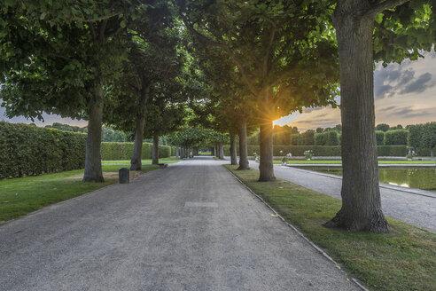 Germany, Lower Saxony, Hanover, Herrenhaeuser Gaerten, alley in the evening - PVCF01164