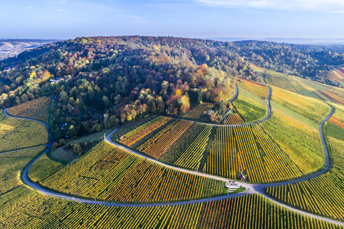 Germany, Stuttgart, aerial view of vineyards at Kappelberg in autumn - STSF01365