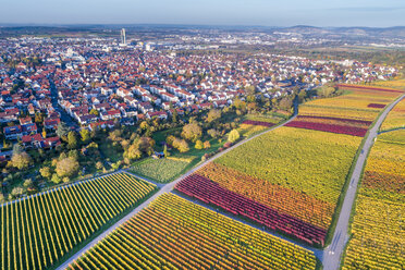Germany, Stuttgart, aerial view of vineyards at Kappelberg in autumn - STSF01368