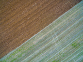Italy, Umbria, Gubbio, Aerial view of fields in the countryside in Autumn - LOMF00668