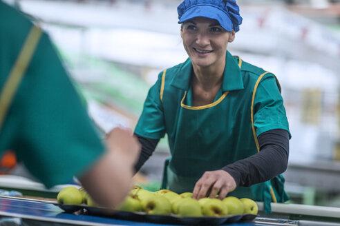 Woman working in apple factory - ZEF14702