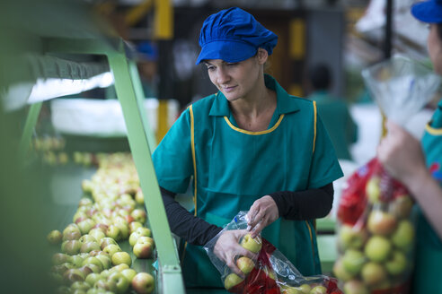 Woman packing apples in plastic bags in factory - ZEF14711