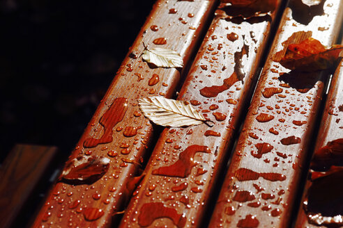 Autumn leaves on wet wooden table, partial view - JTF00856