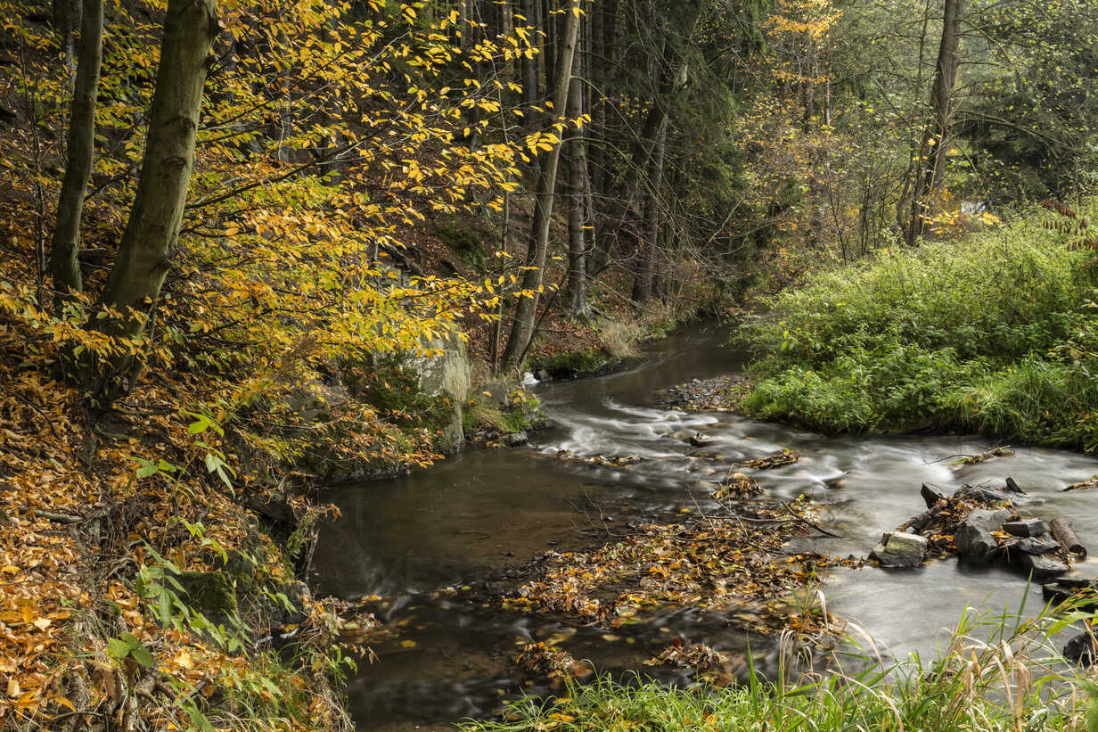 Germany, Thuringia, Ziegenrueck, mountain stream in autumn - MELF00190 - Melanie Kintz/Westend61