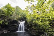 Great Britain, Scotland, Scottish Highlands, River Falloch, Falls of Falloch - FOF09480