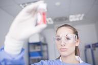 Scientist in lab examining sample - WESTF23617