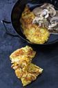 Potato rostis with champignons in cream sauce - CSF28534